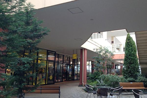 201503037